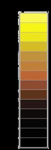 couleur-ebc